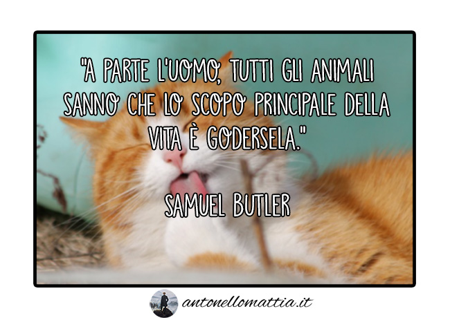 aforisma samuel butler godersi la vita animali felicita benessere