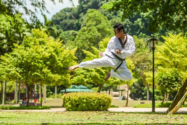 Da arte della guerra ad arte del vivere bene con gli altri la psicologia delle arti marziali 2